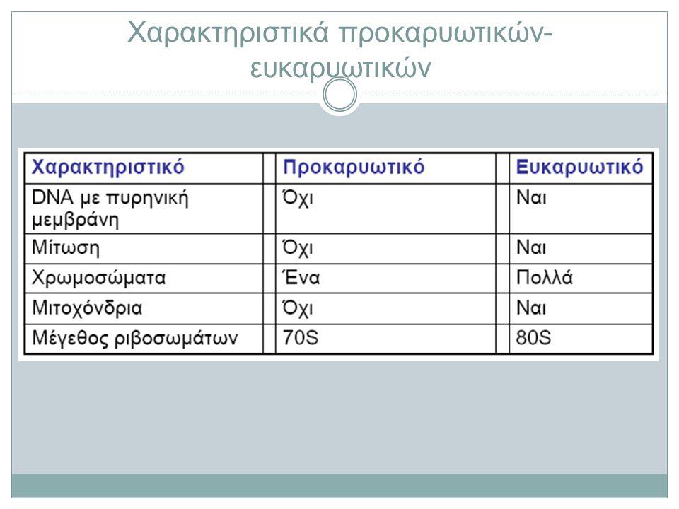 Χαρακτηριστικά προκαρυωτικών - ευκαρυωτικών