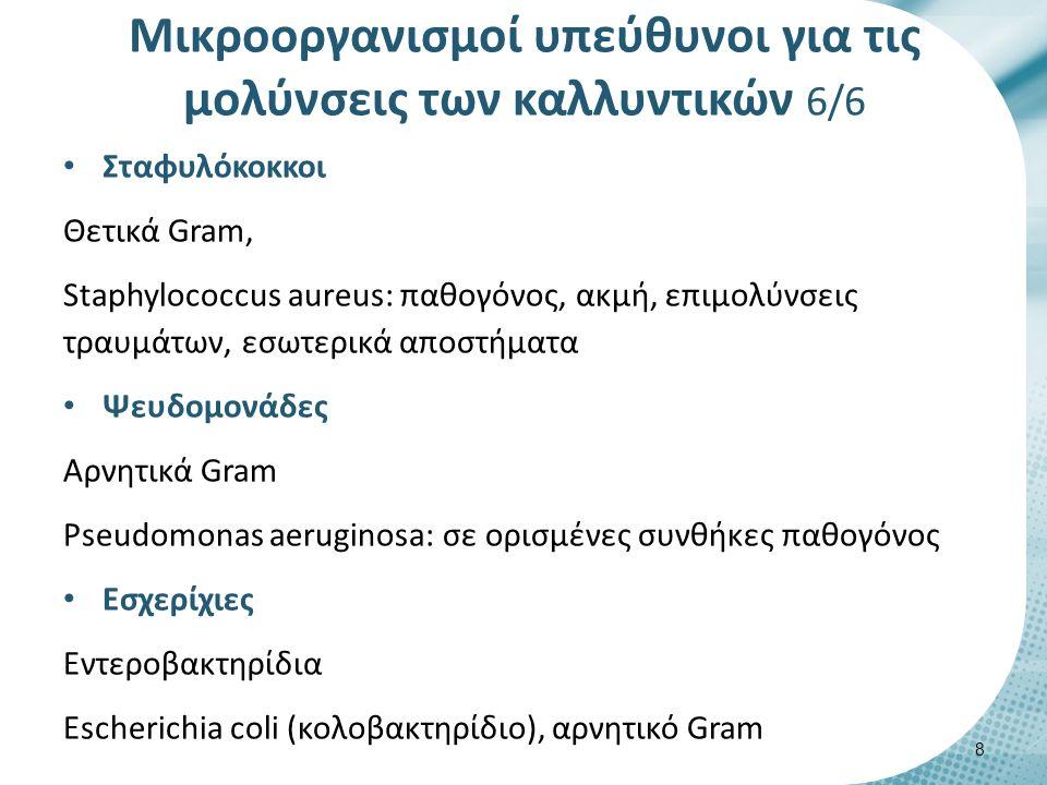Μικροοργανισμοί υπεύθυνοι για τις μολύνσεις των καλλυντικών 6/6 Σταφυλόκοκκοι Θετικά Gram, Staphylococcus aureus: παθογόνος, ακμή, επιμολύνσεις τραυμάτων, εσωτερικά αποστήματα Ψευδομονάδες Αρνητικά Gram Pseudomonas aeruginosa: σε ορισμένες συνθήκες παθογόνος Εσχερίχιες Εντεροβακτηρίδια Εscherichia coli (κολοβακτηρίδιο), αρνητικό Gram 8