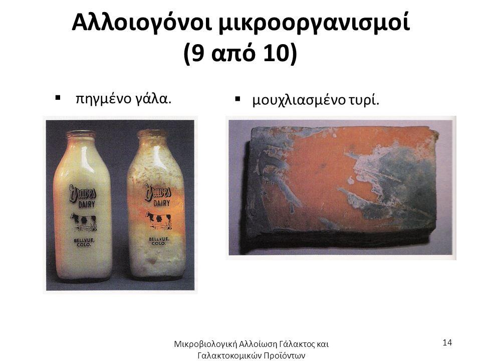 Αλλοιογόνοι μικροοργανισμοί (9 από 10)  πηγμένο γάλα.  μουχλιασμένο τυρί. Μικροβιολογική Αλλοίωση Γάλακτος και Γαλακτοκομικών Προϊόντων 14