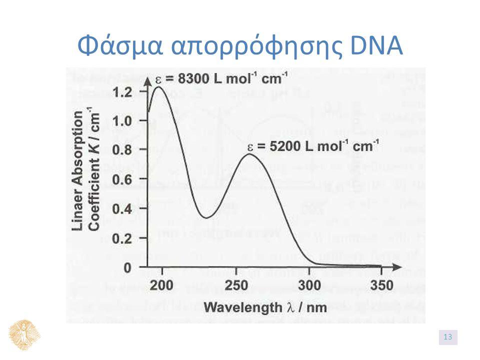 Φάσμα απορρόφησης DNA 1313