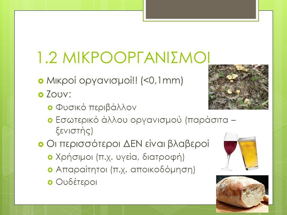 Μετάδοση & πρόληψη  Τροφή  Νερό  Επαφή με άτομα/ζώα  Επαφή με αντικείμενα  Σεξουαλική επαφή  Πλύσιμο (φρούτα, λαχανικά) / Ψήσιμο (κρέας)  Χλωρίωση (χλώριο αναστέλλει ανάπτυξη μικροοργανισμών  Προσωπική & δημόσια υγιεινή (πλύσιμο χεριών, δέρματός, μαλλιών κτλ)  Χρήση προφυλακτικού