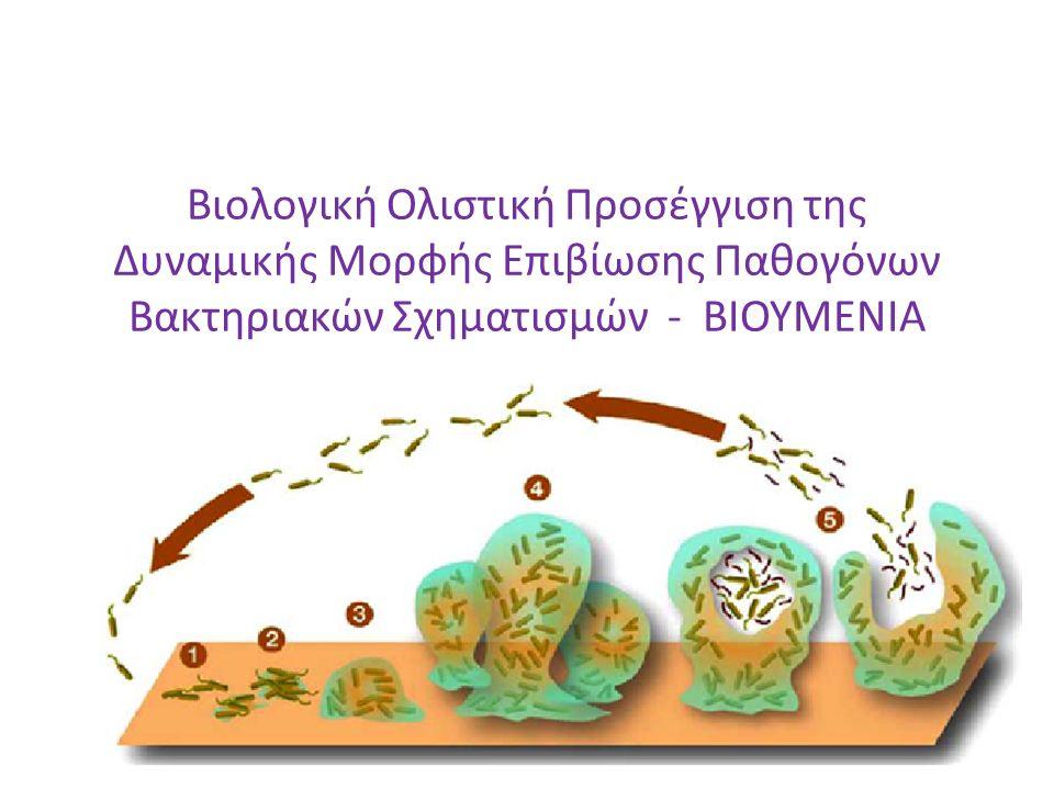 Τι είναι το βιουμένιο Με τον όρο βιο-υμένιο εννοούμε μια μικροβιακή κοινότητα που προσκολλάται σε μια επιφάνεια ή μεσεπιφάνεια, αβιοτική ή όχι, συνήθως εγκλειόμενη σε στρώμα εξωκυτταρικών πολυσακχαριτών παραγόμενων από τα ίδια τα μικρόβια, και τα οποία παρουσιάζουν διαφορετικό φαινότυπο όσον αφορά το ρυθμό αύξησης και τη γονιδιακή έκφραση.
