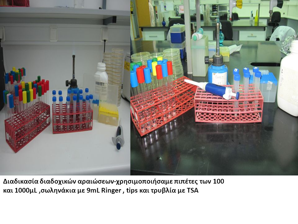 Διαδικασία διαδοχικών αραιώσεων-χρησιμοποιήσαμε πιπέτες των 100 και 1000μL,σωληνάκια με 9mL Ringer, tips και τρυβλία με TSA