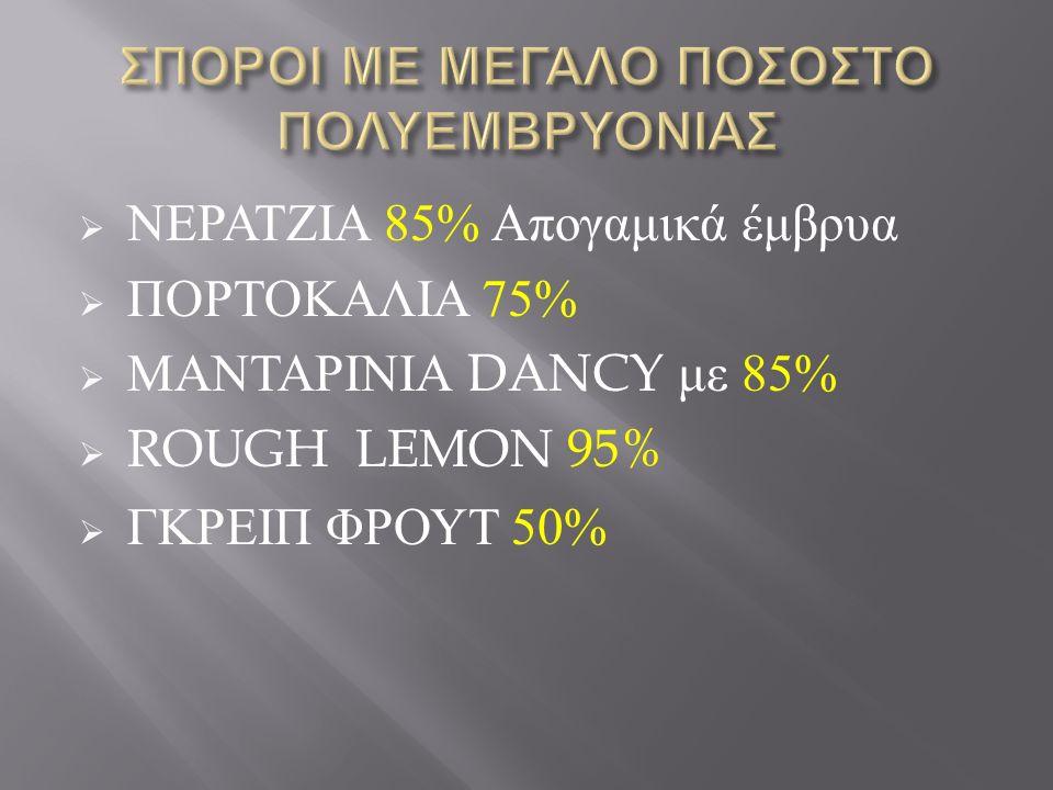  ΝΕΡΑΤΖΙΑ 85% Απογαμικά έμβρυα  ΠΟΡΤΟΚΑΛΙΑ 75%  ΜΑΝΤΑΡΙΝΙΑ DANCY με 85%  ROUGH LEMON 95%  ΓΚΡΕΙΠ ΦΡΟΥΤ 50%