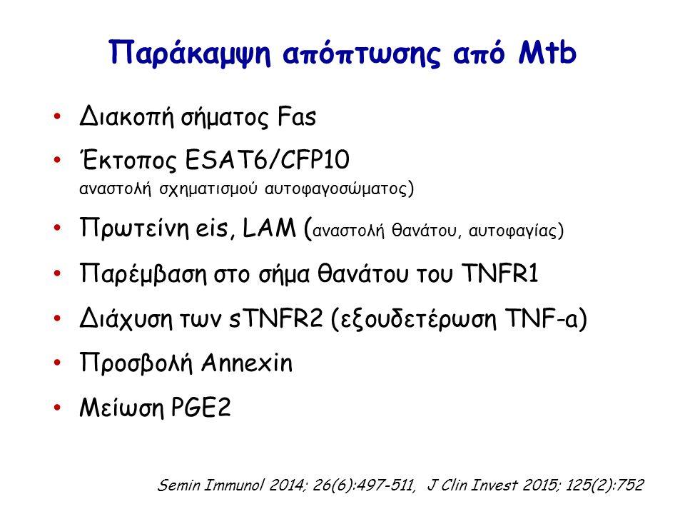 Παράκαμψη απόπτωσης από Mtb Διακοπή σήματος Fas Έκτοπος ESAT6/CFP10 αναστολή σχηματισμού αυτοφαγοσώματος) Πρωτείνη eis, LAM ( αναστολή θανάτου, αυτοφαγίας) Παρέμβαση στο σήμα θανάτου του TNFR1 Διάχυση των sTNFR2 (εξουδετέρωση TNF-a) Προσβολή Annexin Μείωση PGE2 Semin Immunol 2014; 26(6):497-511, J Clin Invest 2015; 125(2):752