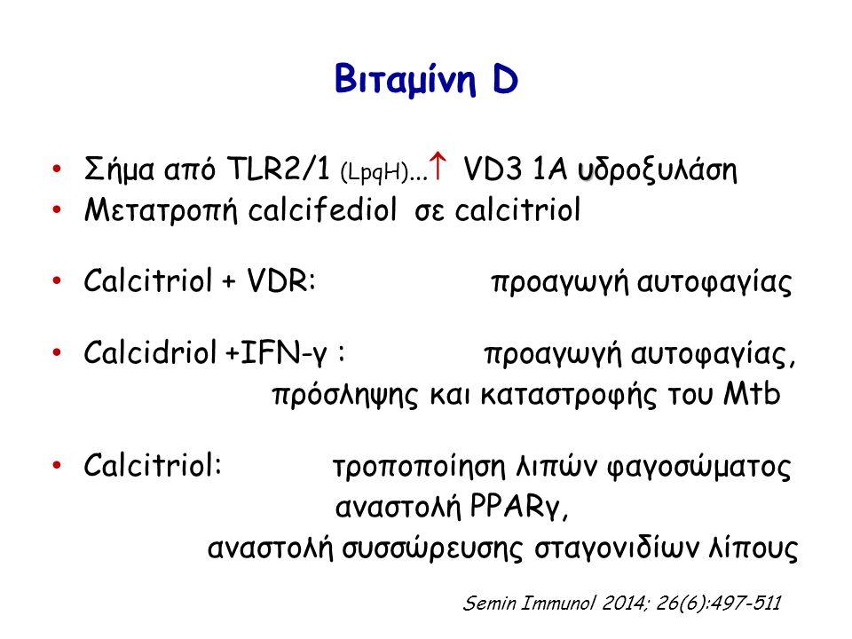 Βιταμίνη D υ Σήμα από TLR2/1 (LpqH) …  VD3 1A υδροξυλάση Μετατροπή calcifediol σε calcitriol Calcitriol + VDR: προαγωγή αυτοφαγίας Calcidriol +ΙFN-γ : προαγωγή αυτοφαγίας, πρόσληψης και καταστροφής του Mtb Calcitriol: τροποποίηση λιπών φαγοσώματος αναστολή PPARγ, αναστολή συσσώρευσης σταγονιδίων λίπους Semin Immunol 2014; 26(6):497-511