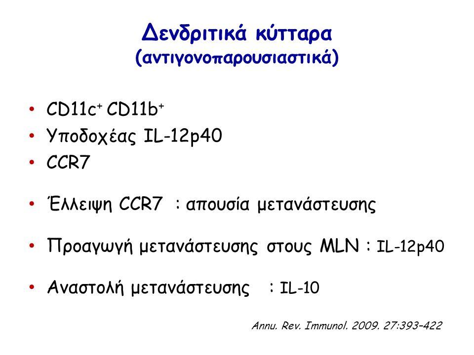 Δενδριτικά κύτταρα (αντιγονοπαρουσιαστικά) CD11c + CD11b + Υποδοχέας IL-12p40 CCR7 Έλλειψη CCR7 : απουσία μετανάστευσης Προαγωγή μετανάστευσης στους MLN : IL-12p40 Αναστολή μετανάστευσης : IL-10 Annu.