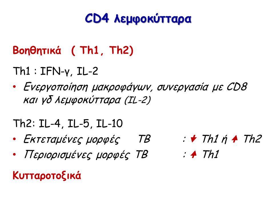 CD4 λεμφοκύτταρα Βοηθητικά ( Th1, Th2) Th1 : IFN-γ, IL-2 Ενεργοποίηση μακροφάγων, συνεργασία με CD8 και γδ λεμφοκύτταρα (IL-2) Th2: IL-4, IL-5, IL-10 Εκτεταμένες μορφές ΤΒ :  Th1 ή Th2 Περιορισμένες μορφές ΤΒ : Th1 Κυτταροτοξικά