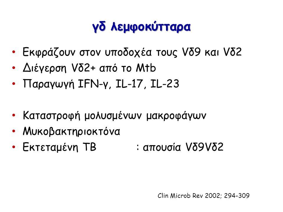 Εκφράζουν στον υποδοχέα τους Vδ9 και Vδ2 Διέγερση Vδ2+ από το Μtb Παραγωγή IFN-γ, IL-17, IL-23 Καταστροφή μολυσμένων μακροφάγων Μυκοβακτηριοκτόνα Εκτε