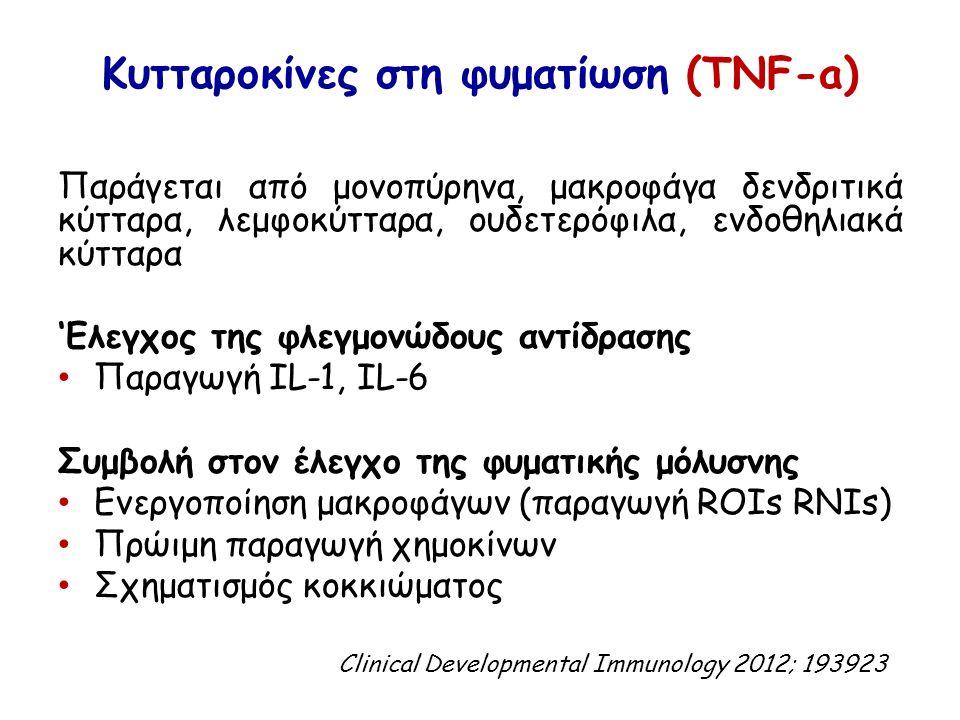 Κυτταροκίνες στη φυματίωση (TNF-a) Παράγεται από μονοπύρηνα, μακροφάγα δενδριτικά κύτταρα, λεμφοκύτταρα, ουδετερόφιλα, ενδοθηλιακά κύτταρα 'Eλεγχος της φλεγμονώδους αντίδρασης Παραγωγή IL-1, IL-6 Συμβολή στον έλεγχο της φυματικής μόλυσνης Ενεργοποίηση μακροφάγων (παραγωγή ROIs RNIs) Πρώιμη παραγωγή χημοκίνων Σχηματισμός κοκκιώματος Clinical Developmental Immunology 2012; 193923