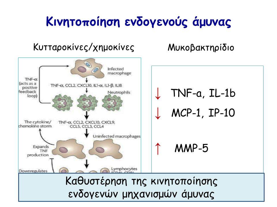 Κινητοποίηση ενδογενούς άμυνας Κυτταροκίνες/χημοκίνες Μυκοβακτηρίδιο ↓ TNF-a, IL-1b ↓ MCP-1, IP-10 ↑ MMP-5 ↓ TNF-a, IL-1b ↓ MCP-1, IP-10 ↑ MMP-5 Καθυστέρηση της κινητοποίησης ενδογενών μηχανισμών άμυνας