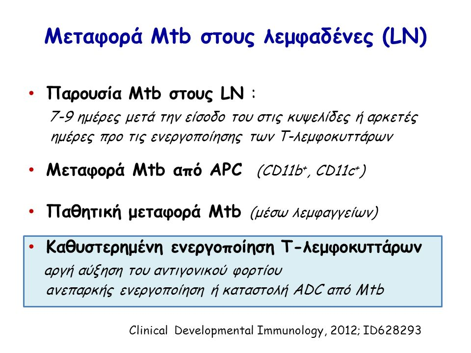 Μεταφορά Mtb στους λεμφαδένες (LN) Παρουσία Mtb στους LN : 7-9 ημέρες μετά την είσοδο του στις κυψελίδες ή αρκετές ημέρες προ τις ενεργοποίησης των T-λεμφοκυττάρων Μεταφορά Mtb από APC (CD11b +, CD11c + ) Παθητική μεταφορά Mtb (μέσω λεμφαγγείων) Καθυστερημένη ενεργοποίηση Τ-λεμφοκυττάρων aργή αύξηση του αντιγονικού φορτίου aνεπαρκής ενεργοποίηση ή καταστολή ADC από Mtb Clinical Developmental Immunology, 2012; ID628293