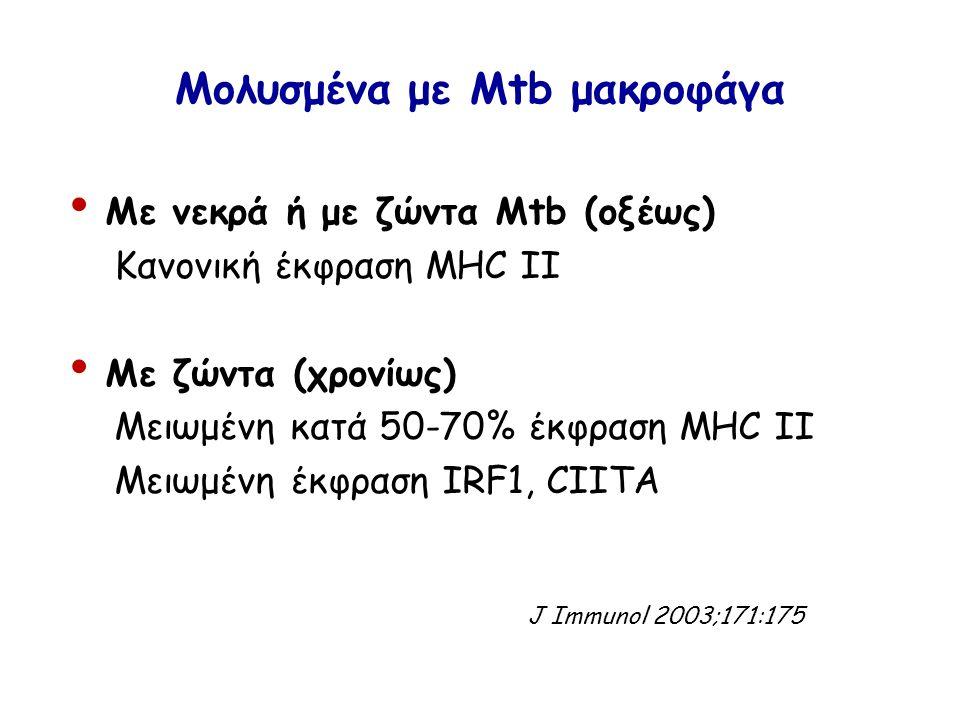 Μολυσμένα με Μtb μακροφάγα Με νεκρά ή με ζώντα Μtb (οξέως) Κανονική έκφραση MHC II Με ζώντα (χρονίως) Μειωμένη κατά 50-70% έκφραση MHC II Μειωμένη έκφραση IRF1, CIITA J Immunol 2003;171:175