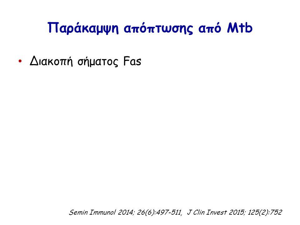 Παράκαμψη απόπτωσης από Mtb Διακοπή σήματος Fas Semin Immunol 2014; 26(6):497-511, J Clin Invest 2015; 125(2):752