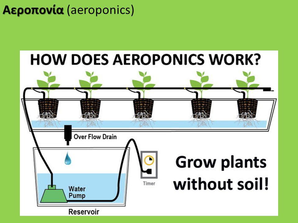 Αεροπονία Αεροπονία (aeroponics)