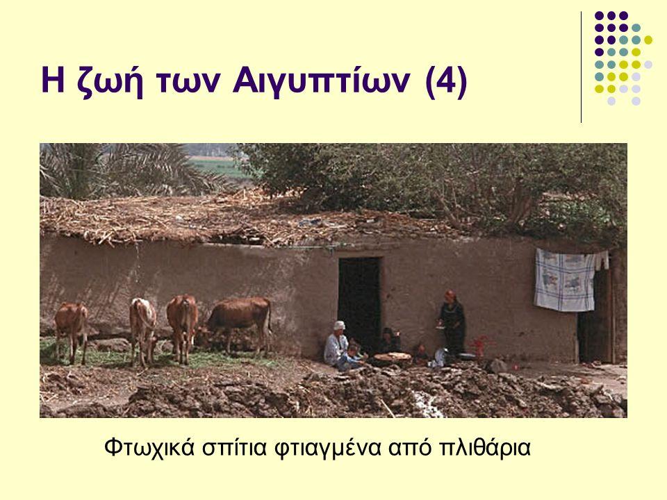Η ζωή των Αιγυπτίων (4) Φτωχικά σπίτια φτιαγμένα από πλιθάρια