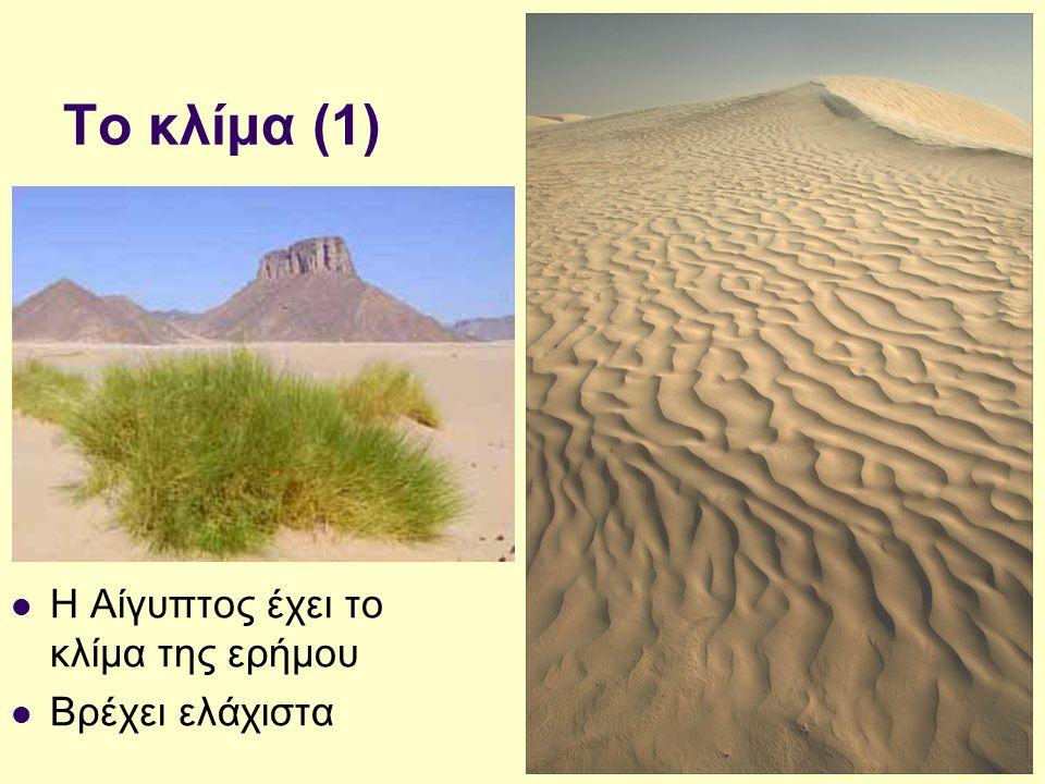 Το κλίμα (1) Η Αίγυπτος έχει το κλίμα της ερήμου Βρέχει ελάχιστα