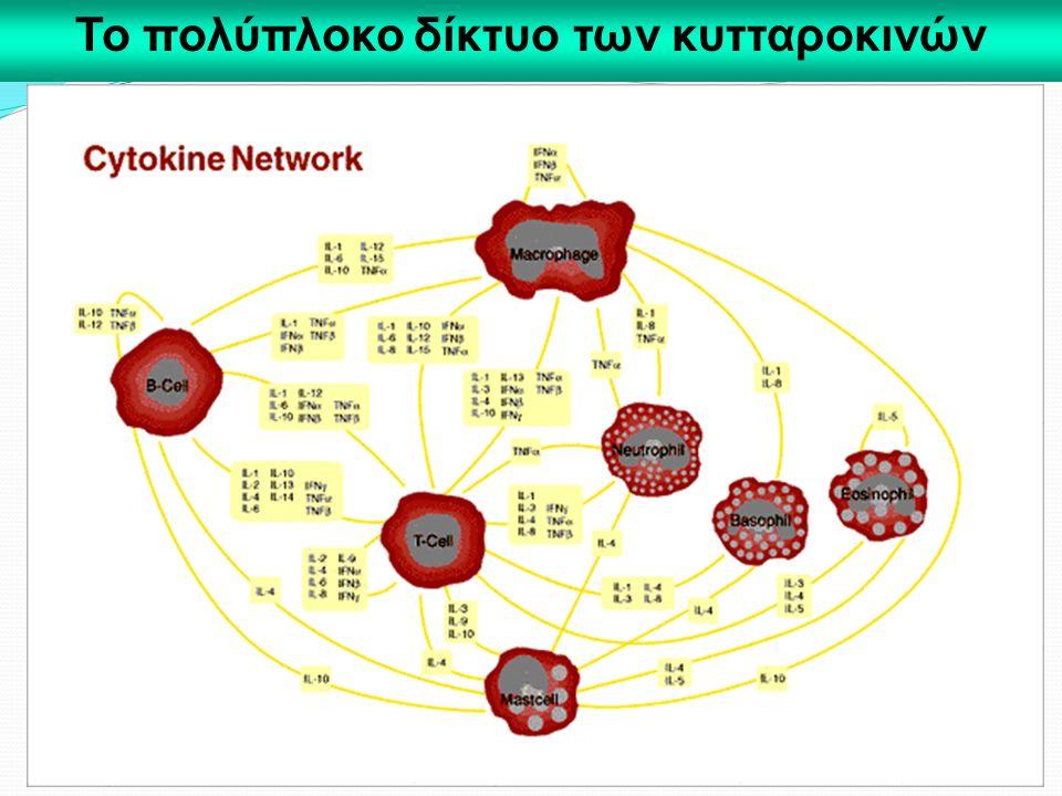 Το πολύπλοκο δίκτυο των κυτταροκινών