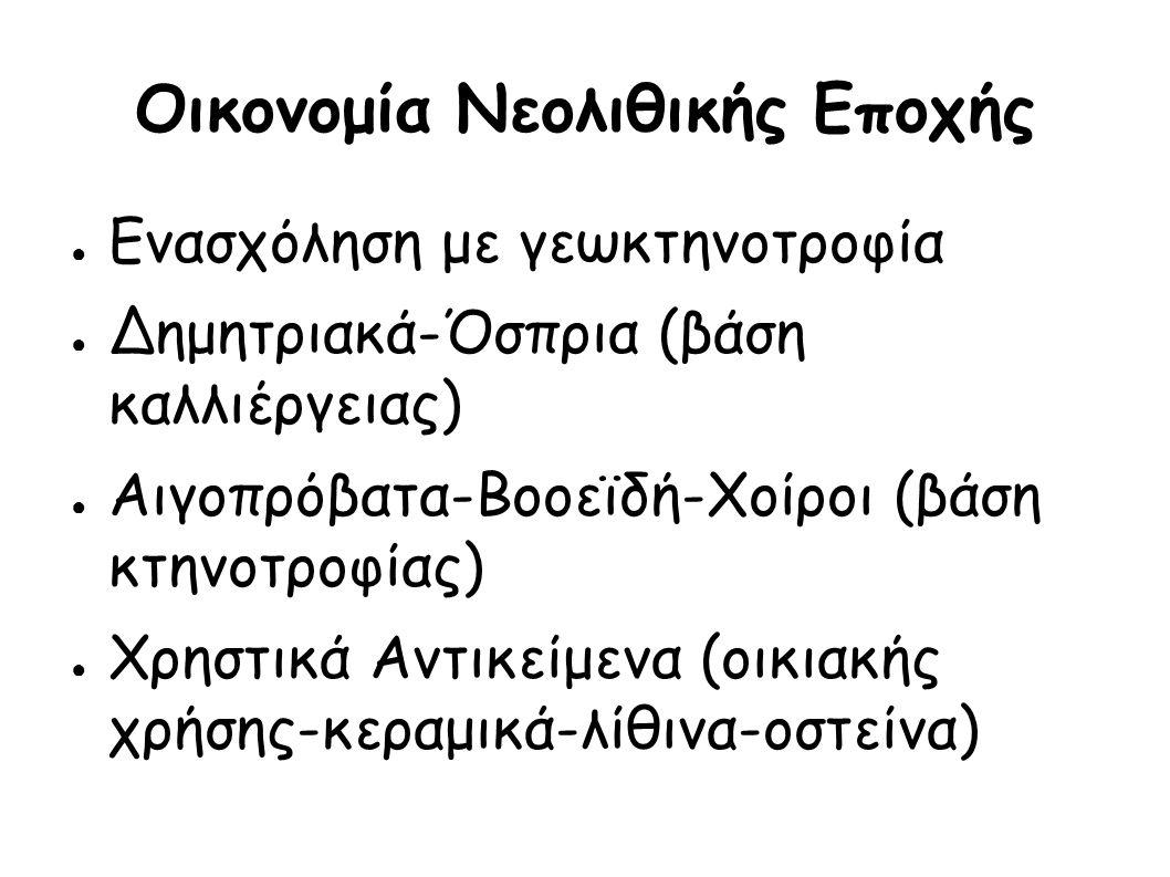 Οργάνωση Νεολιθικής Εποχής ● Φάσεις: ● Ακεραμειϊκή-> Αρχαιότερη-> Μέση-> Νεότερη->Τελική ● Εξέλιξη ζωής ανθρώπου ● 3 στάδια διατροφής: ● καλλιέργεια ● αποθήκευση ● αξιοποίηση καρπών ● Κτηνοτροφία (εξημέρωση ζώων)