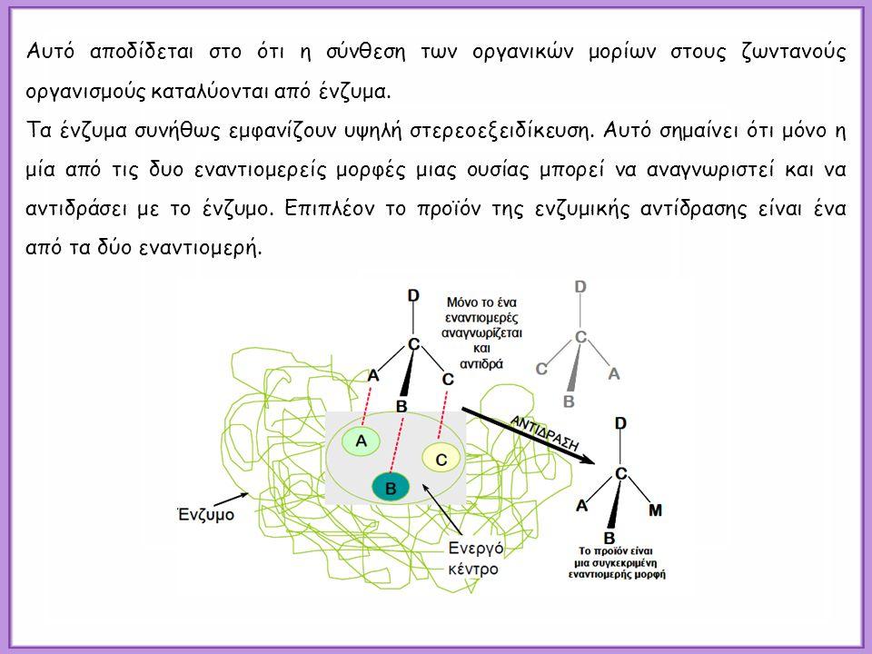 Αυτό αποδίδεται στο ότι η σύνθεση των οργανικών μορίων στους ζωντανούς οργανισμούς καταλύονται από ένζυμα. Τα ένζυμα συνήθως εμφανίζουν υψηλή στερεοεξ