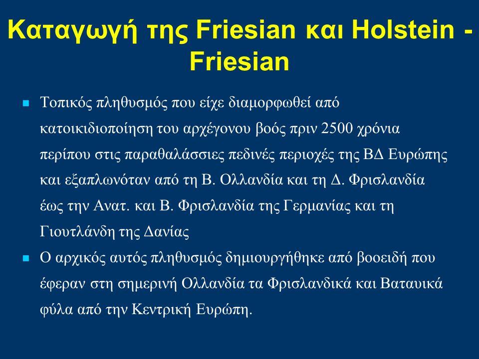 Καταγωγή της Friesian και Ηolstein - Friesian Τοπικός πληθυσμός που είχε διαμορφωθεί από κατοικιδιοποίηση του αρχέγονου βοός πριν 2500 χρόνια περίπου στις παραθαλάσσιες πεδινές περιοχές της ΒΔ Ευρώπης και εξαπλωνόταν από τη Β.