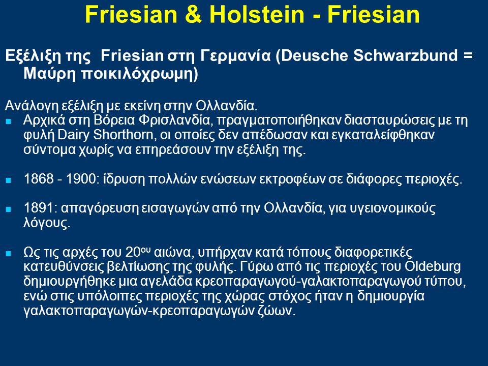 Εξέλιξη της Friesian στη Γερμανία (Deusche Schwarzbund = Μαύρη ποικιλόχρωμη) Ανάλογη εξέλιξη με εκείνη στην Ολλανδία. Αρχικά στη Βόρεια Φρισλανδία, πρ