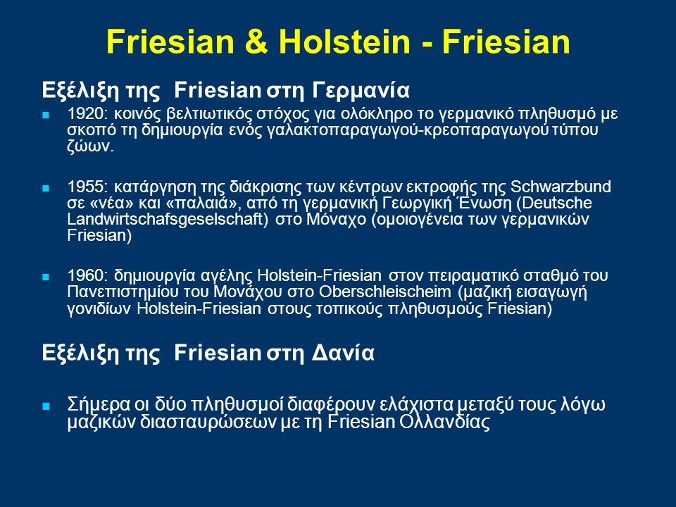 Εξέλιξη της Friesian στη Γερμανία 1920: κοινός βελτιωτικός στόχος για ολόκληρο το γερμανικό πληθυσμό με σκοπό τη δημιουργία ενός γαλακτοπαραγωγού-κρεοπαραγωγού τύπου ζώων.