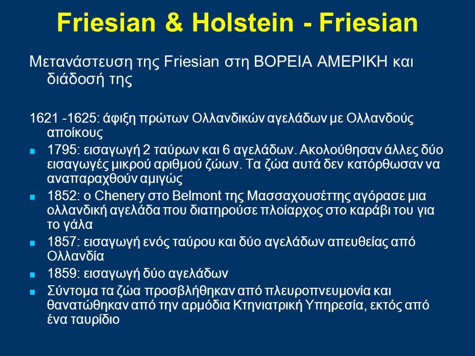 Μετανάστευση της Friesian στη ΒΟΡΕΙΑ ΑΜΕΡΙΚΗ και διάδοσή της 1621 -1625: άφιξη πρώτων Ολλανδικών αγελάδων με Ολλανδούς αποίκους 1795: εισαγωγή 2 ταύρω