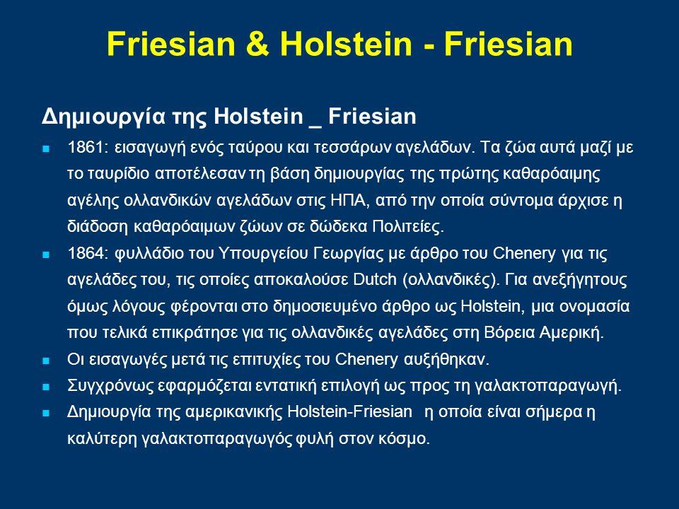 Δημιουργία της Holstein _ Friesian 1861: εισαγωγή ενός ταύρου και τεσσάρων αγελάδων. Τα ζώα αυτά μαζί με το ταυρίδιο αποτέλεσαν τη βάση δημιουργίας τη