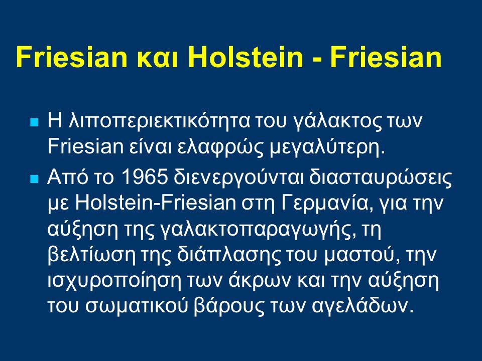 Friesian και Ηolstein - Friesian Η λιποπεριεκτικότητα του γάλακτος των Friesian είναι ελαφρώς μεγαλύτερη. Από το 1965 διενεργούνται διασταυρώσεις με H