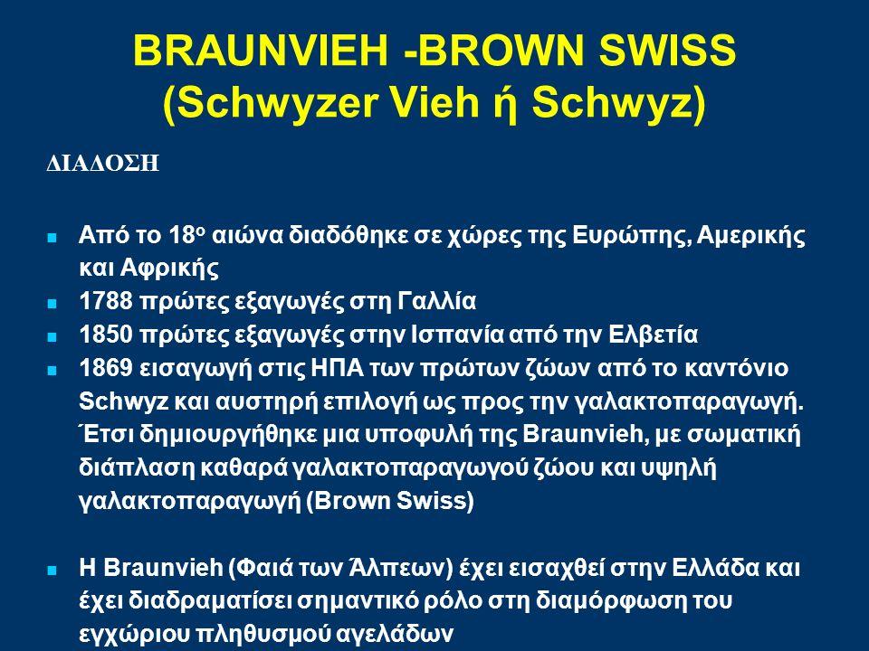 BRAUNVIEH -BROWN SWISS (Schwyzer Vieh ή Schwyz) ΔΙΑΔΟΣΗ Από το 18 ο αιώνα διαδόθηκε σε χώρες της Ευρώπης, Αμερικής και Αφρικής 1788 πρώτες εξαγωγές στη Γαλλία 1850 πρώτες εξαγωγές στην Ισπανία από την Ελβετία 1869 εισαγωγή στις ΗΠΑ των πρώτων ζώων από το καντόνιο Schwyz και αυστηρή επιλογή ως προς την γαλακτοπαραγωγή.