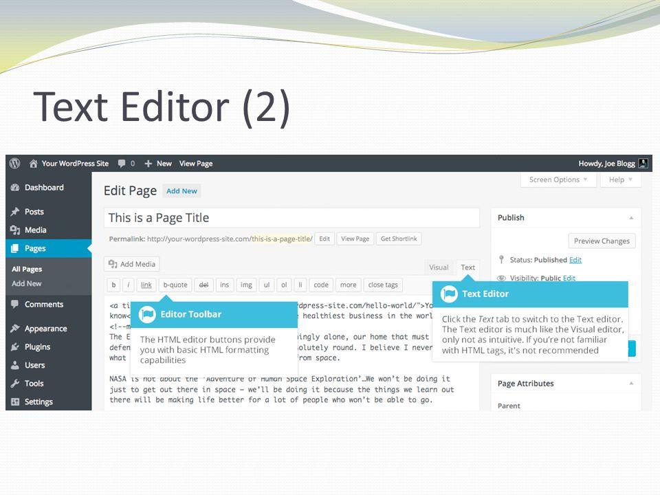 Text Editor (2)