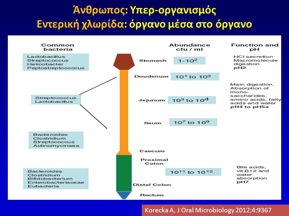 ΔΥΣΒΙΩΣΗ ΣΕ ΙΦΝΕ  Αυξημένος αριθμός μικροβίων του βλεννογόνου (ΕΚ>ΝC)  Χλωρίδα ασταθής  «Σπάνια» μικρόβια  Αυξημένος αριθμός μικροοργανισμών με ικανότητα προσκόλλησης/διείσδυσης στον βλεννογόνο Chassaing B, Gastro 2011Swidinski A, J Phys Pharm 2009 Martinez C, AJG 2008 De Cruz P, IBD 2011