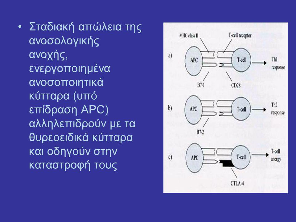 Σταδιακή απώλεια της ανοσολογικής ανοχής, ενεργοποιημένα ανοσοποιητικά κύτταρα (υπό επίδραση APC) αλληλεπιδρούν με τα θυρεοειδικά κύτταρα και οδηγούν στην καταστροφή τους