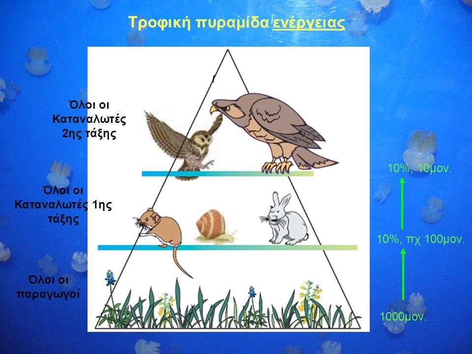 Τροφική πυραμίδα ενέργειας Όλοι οι παραγωγοί Όλοι οι Καταναλωτές 1ης τάξης Όλοι οι Καταναλωτές 2ης τάξης 10%, πχ 100μον. 10%, 10μον. 1000μον.