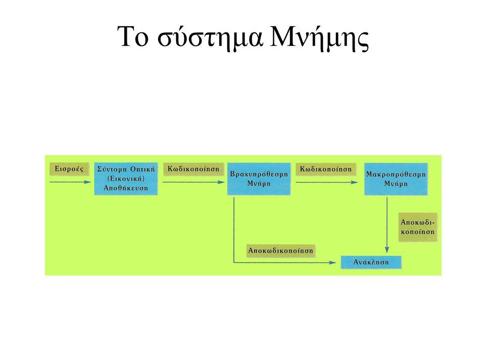 19 Το σύστημα Μνήμης