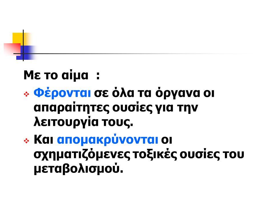 ΠΤΗΝΑ  ΦΛΕΒΑ ΦΤΕΡΟΥΓΑΣ  ΛΕΙΡΙ