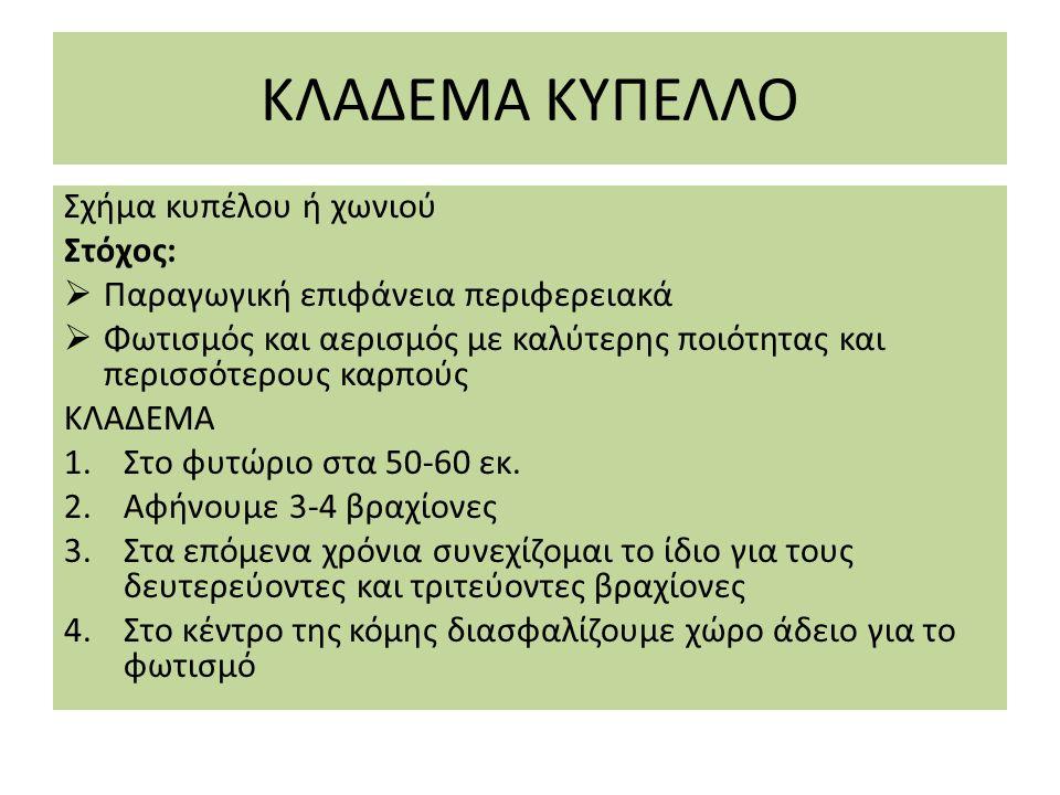 ΚΥΠΕΛΛΟ