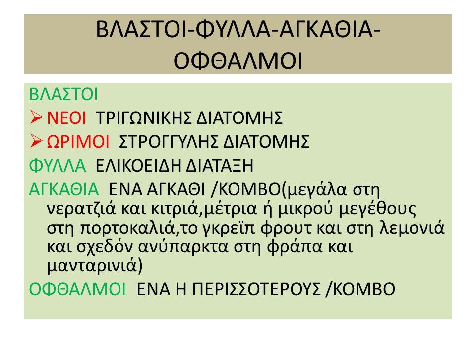 ΒΛΑΣΤΟΙ-ΑΓΚΑΘΙΑ