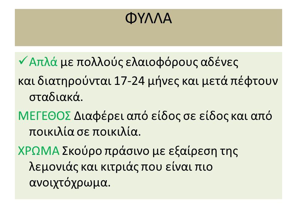 ΦΥΛΛΑ-ΜΙΣΧΟΣ