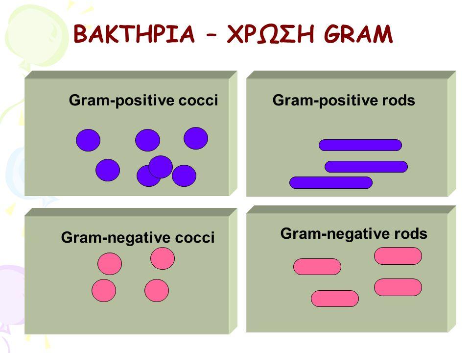 Gram-positive rods Gram-negative rods Gram-positive cocci Gram-negative cocci ΒΑΚΤΗΡΙΑ – ΧΡΩΣΗ GRAM