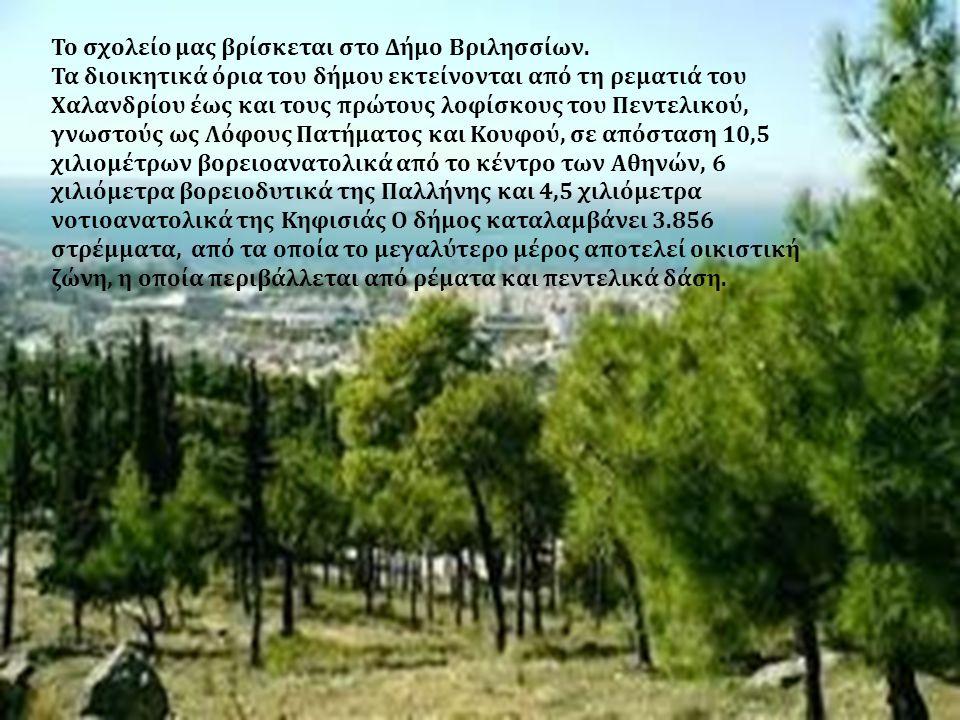 Το σχολείο μας βρίσκεται στο Δήμο Βριλησσίων. Τα διοικητικά όρια του δήμου εκτείνονται από τη ρεματιά του Χαλανδρίου έως και τους πρώτους λοφίσκους το
