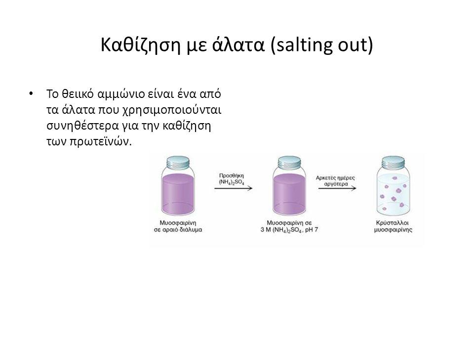 Καθίζηση με άλατα (salting out) Το θειικό αμμώνιο είναι ένα από τα άλατα που χρησιμοποιούνται συνηθέστερα για την καθίζηση των πρωτεϊνών.