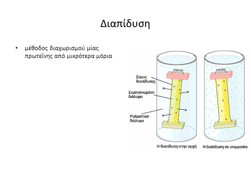 Διαπίδυση μέθοδος διαχωρισμού μίας πρωτεΐνης από μικρότερα μόρια