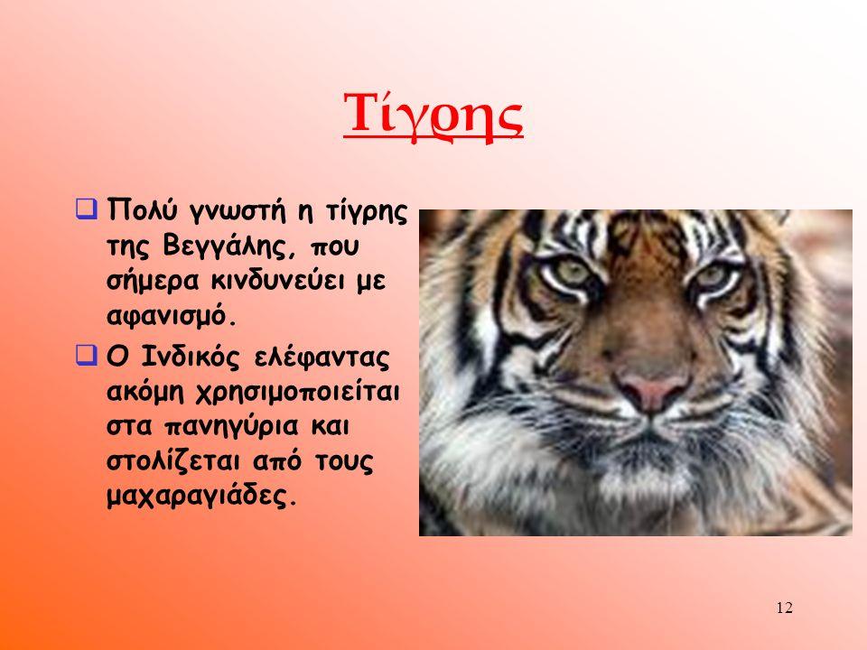 11 Ζώα  Στα παρθένα δάση της χώρας ζουν πολλά άγρια είδη, όπως τίγρεις,ασιατικοί ελέφαντες, πάνθηρες κ.τ.λ.