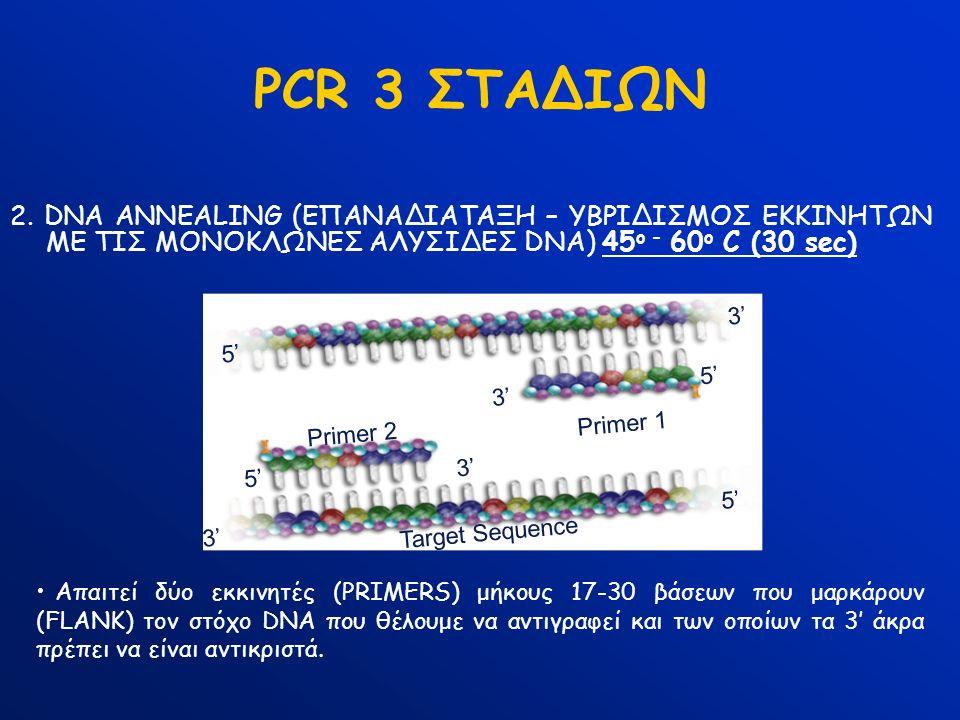 PCR 3 ΣΤΑΔΙΩΝ 2. DNA ANNEALING (ΕΠΑΝΑΔΙΑΤΑΞΗ – ΥΒΡΙΔΙΣΜΟΣ ΕΚΚΙΝΗΤΩΝ ΜΕ ΤΙΣ ΜΟΝΟΚΛΩΝΕΣ ΑΛΥΣΙΔΕΣ DNA) 45 ο - 60 ο C (30 sec) Απαιτεί δύο εκκινητές (PRIM