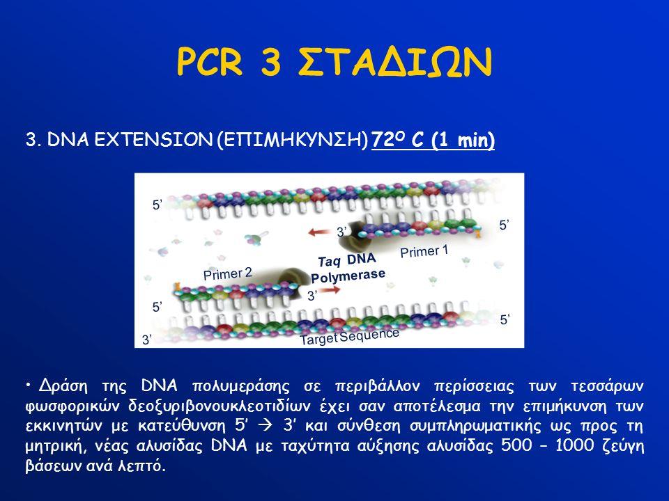Target Sequence Primer 1 Primer 2 5' 3' 5' 3' Taq DNA Polymerase PCR 3 ΣΤΑΔΙΩΝ 3. DNA EXTENSION (ΕΠΙΜΗΚΥΝΣΗ) 72 Ο C (1 min) Δράση της DNA πολυμεράσης