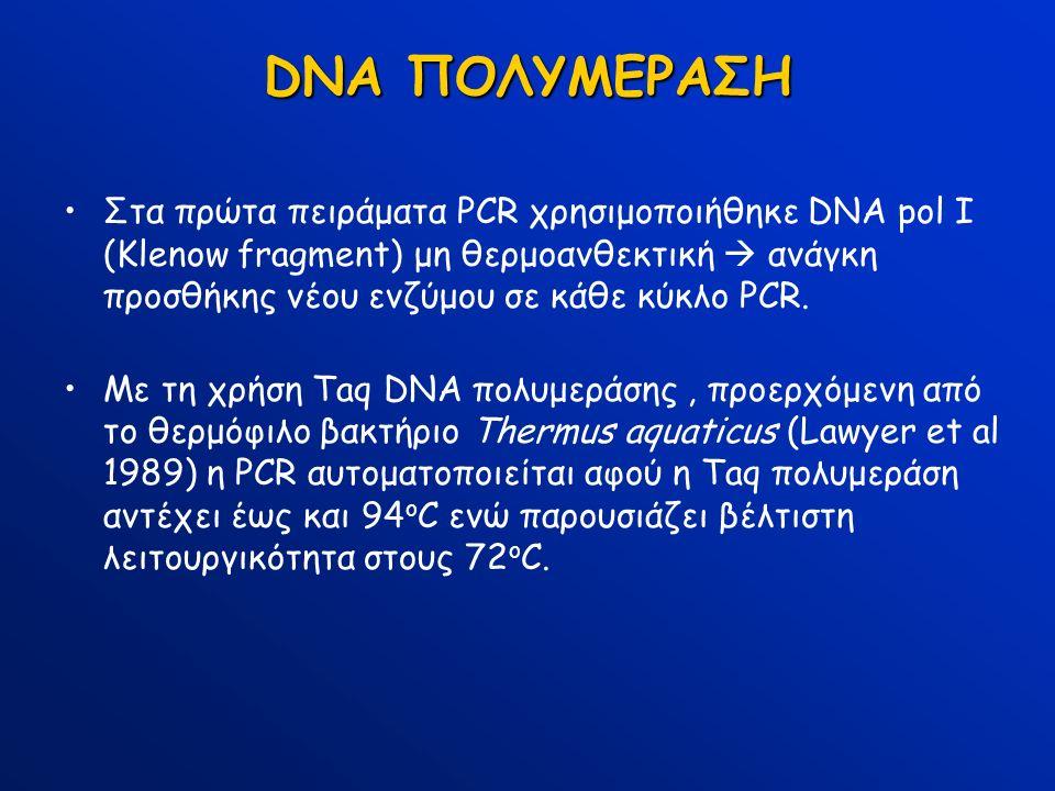 DNA ΠΟΛΥΜΕΡΑΣΗ Στα πρώτα πειράματα PCR χρησιμοποιήθηκε DNA pol I (Klenow fragment) μη θερμοανθεκτική  ανάγκη προσθήκης νέου ενζύμου σε κάθε κύκλο PCR