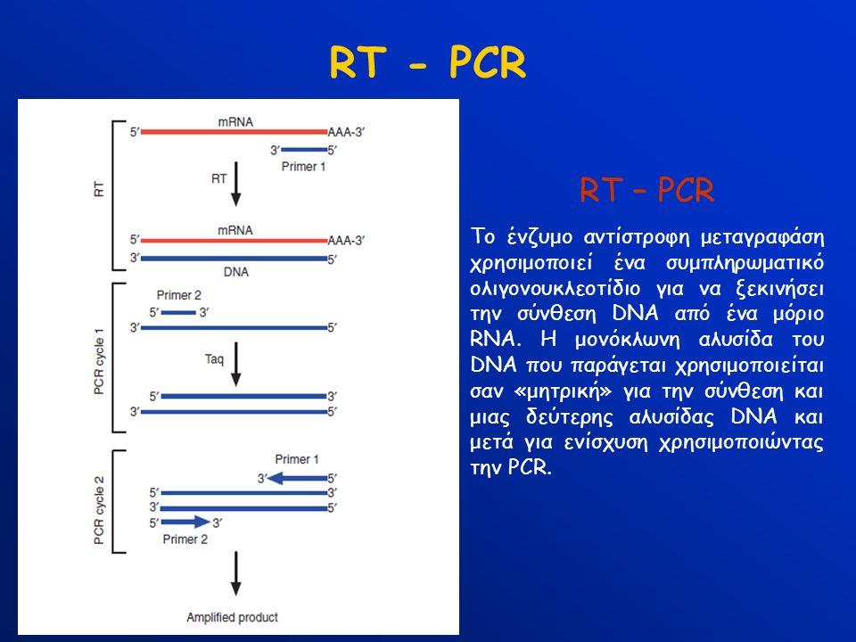 RT - PCR RT – PCR Το ένζυμο αντίστροφη μεταγραφάση χρησιμοποιεί ένα συμπληρωματικό ολιγονουκλεοτίδιο για να ξεκινήσει την σύνθεση DNA από ένα μόριο RNA.