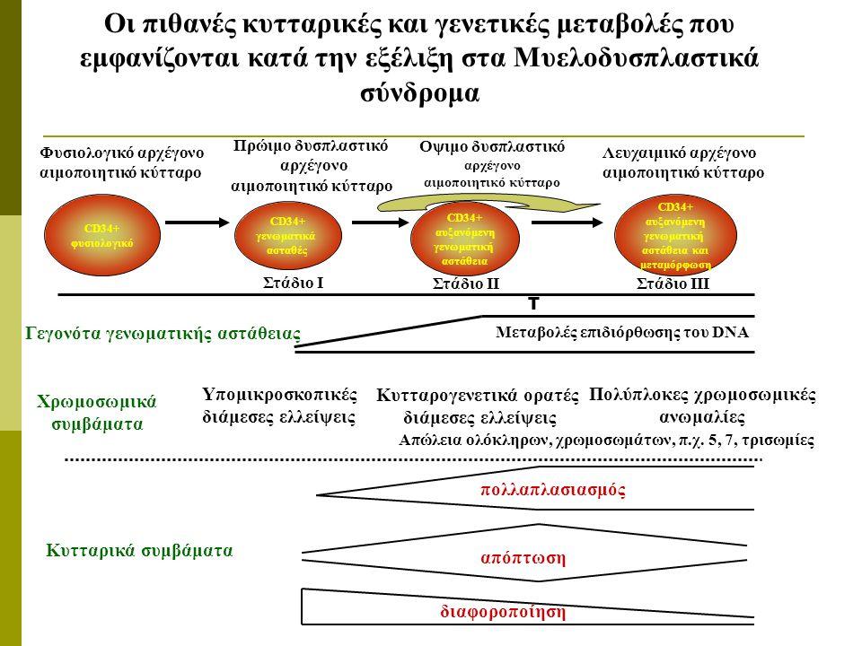 CD34+ φυσιολογικό CD34+ γενωματικά ασταθές CD34+ αυξανόμενη γενωματική αστάθεια Γεγονότα γενωματικής αστάθειας Φυσιολογικό αρχέγονο αιμοποιητικό κύτταρο Πρώιμο δυσπλαστικό αρχέγονο αιμοποιητικό κύτταρο Οψιμο δυσπλαστικό αρχέγονο αιμοποιητικό κύτταρο Λευχαιμικό αρχέγονο αιμοποιητικό κύτταρο Οι πιθανές κυτταρικές και γενετικές μεταβολές που εμφανίζονται κατά την εξέλιξη στα Μυελοδυσπλαστικά σύνδρομα Μεταβολές επιδιόρθωσης του DNA Χρωμοσωμικά συμβάματα Κυτταρικά συμβάματα Υπομικροσκοπικές διάμεσες ελλείψεις Κυτταρογενετικά ορατές διάμεσες ελλείψεις Πολύπλοκες χρωμοσωμικές ανωμαλίες Στάδιο Ι Στάδιο ΙΙΣτάδιο ΙΙΙ απόπτωση διαφοροποίηση πολλαπλασιασμός CD34+ αυξανόμενη γενωματική αστάθεια και μεταμόρφωση Απώλεια ολόκληρων, χρωμοσωμάτων, π.χ.